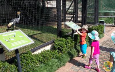 A Trip to the Bird Gardens