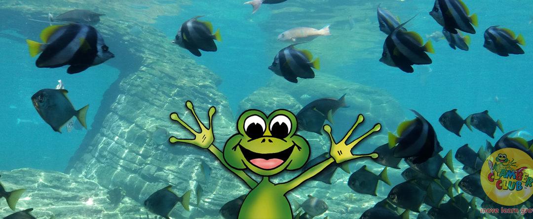 Jog the Frog goes to uShaka Marine World