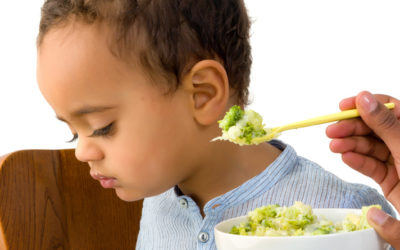 Fussy Eater No More! 9 Tips to help encourage your baby to eat.