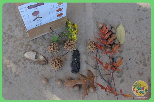 Autumn Scavenger Hunt