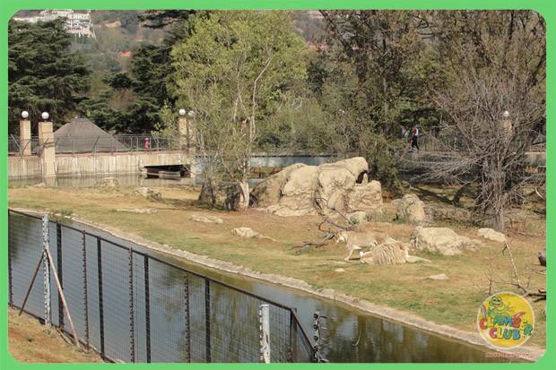 zoo-trip-05